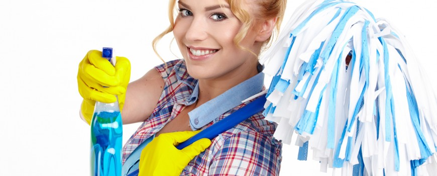Housewife Ready To Fight With Spray Bottle and Mop